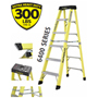 Featherlite Industrial Ladders